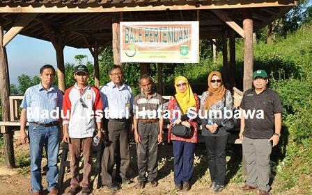 Madu Lestari Hutan Sumbawa