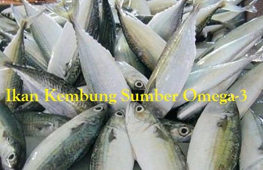 Ikan Kembung Sumber Omega-3